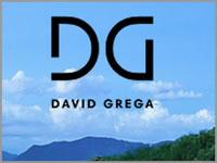 David Grega Real Estate