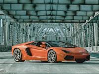 2014 Lamborghini Aventador Roadster Gary S